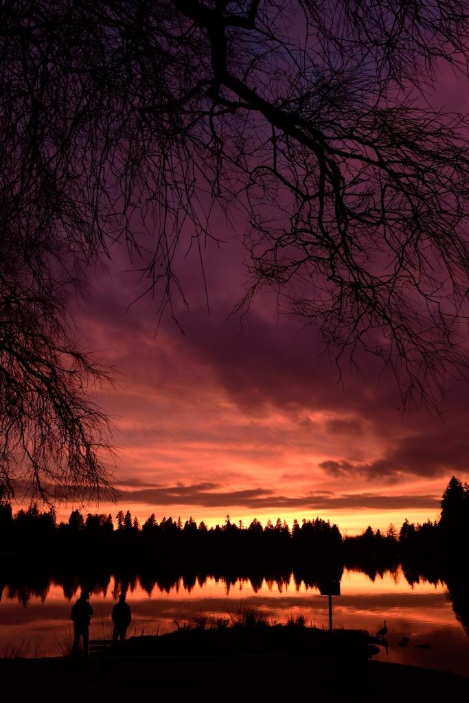 Lost-Lagoon-Samuel-Cotton-Photography